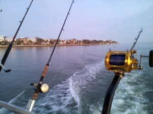 Charleston Off Shore Fishing Charter