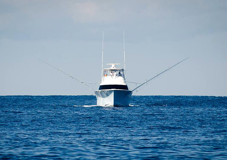 South Carolina Offshore Fishing Charter